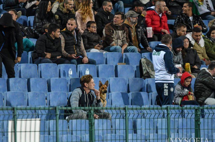 Сериозни мерки за сигурност за Левски